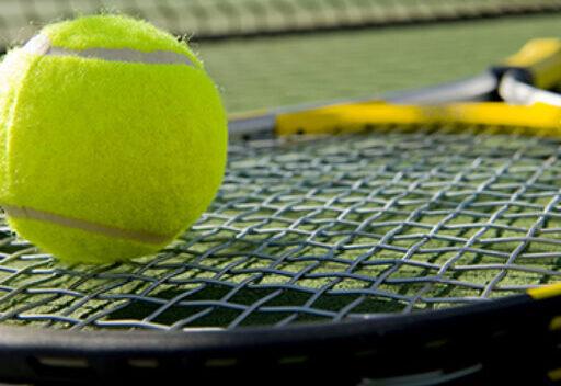 Bridlebrook Park Tennis Club